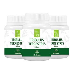 COMBO  Tribulus Terrestris 280mg 60 Cápsulas (3 unidades)