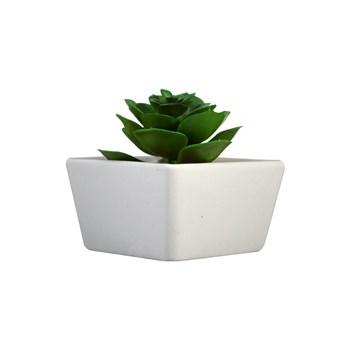 Vaso Decorativo de Porcelana com Suculenta